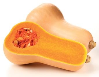 Butternut squash nutritional information